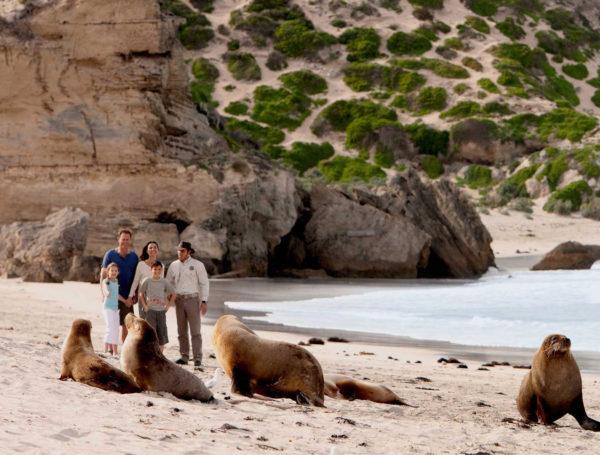 Seal-Bay